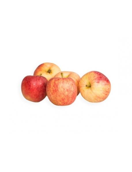 Jablko červené, voľné SK kal.60+ 1kg